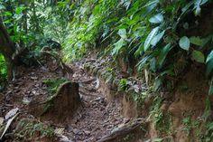 Restos del empedrado de los caminos coloniales. Aún se puede observar la linea de piedras que formaron el firme del trazado