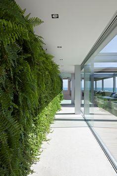 Apartamento Dois Irmãos / Bernardes Arquitetura #green #wall