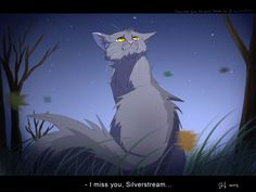 Silverstream and Graystripe have always been one of my top couples, even though it was forbidden love it didn't matter to them.