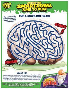 The A-Maze-Ing Brain
