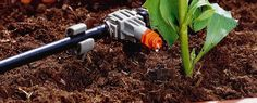 Micro-drip Irrigation System – Automatic Drip Watering Technique by GARDENA