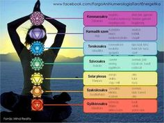 It is very important to do chakra meditation technique the correct way. This guide shows you how to do 7 chakra meditation for beginners and chakra dhyana Chakra Meditation, Chakra Healing, Meditation Music, Meditation Youtube, Online Meditation, Deep Meditation, Healing Heart, Kundalini Yoga, Mindfulness Meditation