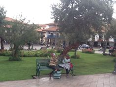 Friendship in the Park, Cusco