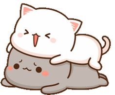 The perfect Peachcat Cat Cats Animated GIF for your conversation. Discover and Share the best GIFs on Tenor. Cute Bear Drawings, Cute Animal Drawings Kawaii, Cute Kawaii Animals, Kawaii Cat, Cute Love Pictures, Cute Love Gif, Cute Love Memes, Cute Cat Gif, Cute Cartoon Pictures