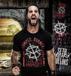 Wwe Seth Rollins, Seth Freakin Rollins, Rebecca Quin, Wwe World, Cm Punk, Daniel Bryan, Randy Orton, Total Divas, Wwe Photos