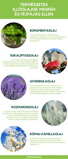 Doterra, Essential Oils, Herbs, Healthy, Therapy, Essentials, Aromatherapy, Herb, Healing