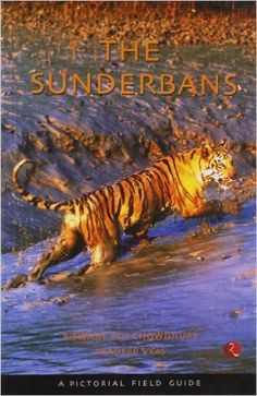 The Sunderbans