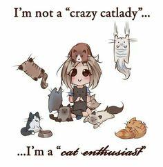 I'm not a crazy catlady...