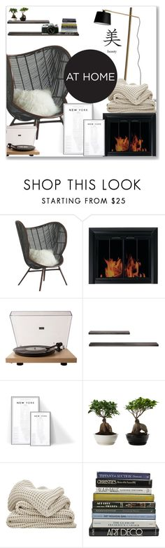 """""""#fireplace"""" by sarabutterfly ❤ liked on Polyvore featuring interior, interiors, interior design, home, home decor, interior decorating, Pleasant Hearth, BoConcept, Crosley Radio & Furniture and Eurø Style"""