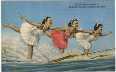 """Show time at Cypress Gardens, c1940s. Jitterboarding is included on the :every Ride in Water Skiing"""" list at http://waterskierslife.com/every-water-skiing-ride-photos-videos-history-and-more/"""