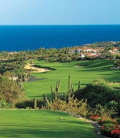Golf Course Welp, I know where I'M going on my next vacation - Palmilla Club, San Jose del Cabo, Mexico. San Jose Del Cabo, Cabo San Lucas, Public Golf Courses, Best Golf Courses, One And Only, Golf Hotel, Location Chalet, Golf Magazine, Golf Course Reviews