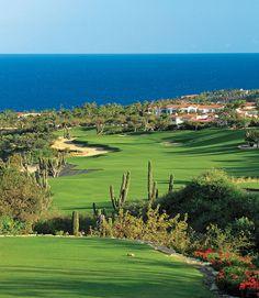 Palmilla #Golf Course