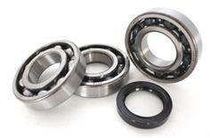 Polaris 300 2x4 /& 4x4 Crank Shaft Crankshaft Bearings /& Seals 1994-1995