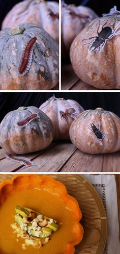 creepy crawly pumpkins + keep the pumpkin and make a soup!