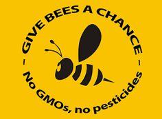 """Résultat de recherche d'images pour """"abeille pesticide"""""""