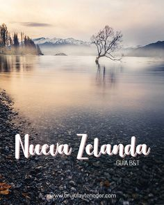 Guía para viajar a Nueva Zelanda River, Beautiful, Outdoor, New Zealand, Beautiful Landscapes, Traveling, Countries, Outdoors, Outdoor Games