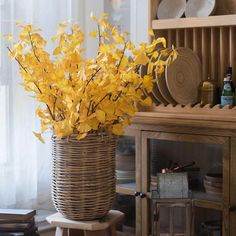 "Artificial Ginkgo Leaf Stem in Yellow 37"" Tall – RusticReach Yellow Plants, Willow Branches, Apothecary Jars, Red Apple, Artificial Plants, Lanterns, Stems, Candle Holders, Leaves"