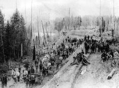 BC Southern Railway in 1898 - Work Gang laying a trackbed in the Fernie area: Columbia Basin Institute of Regional History