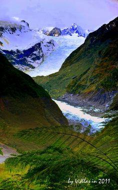 Fox Glacier in South Island, New Zealand
