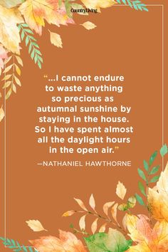 Best Quotes About Autumn. Inspiring Fall Season Quotes - Best Sayings About Autumn to Remind You Just How Amazing Autumn Is Fall Season Quotes, Quotes About Attitude, Best Quotes, Life Quotes, Career Quotes, Dream Quotes, Success Quotes, Quotes Quotes, Qoutes