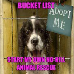 Start my own rescue!