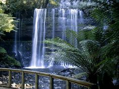 Russell Falls Tasmania.this is stunning you have to go see this