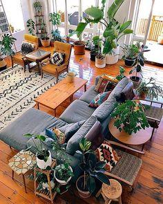 Just Indoor Plants