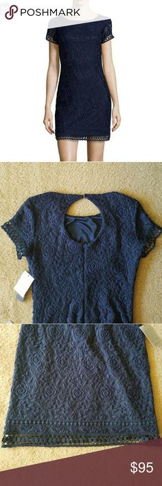 NWT Laundry by Shelli Lace Dress Beautiful navy lace dress, New with tags. Size 8.   Show me your best offer:) Laundry by Shelli Segal Dresses