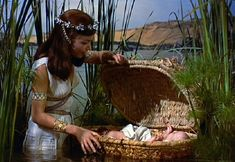 When the Pharaoh decrees that all young children below 2 years of age amongst the Hebrews should be killed, Moses' mother puts him in a basket and the basket on River Nile. Description from filmapia.com. I searched for this on bing.com/images