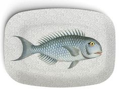 Fish Platter I - 1800's  artwork  on 10 x 14 Melamine Platter
