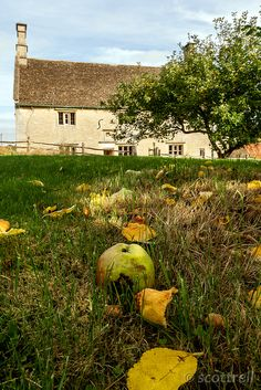 Woolsthorpe Manor, Birthplace of Isaac Newton (NT) Lincolnshire