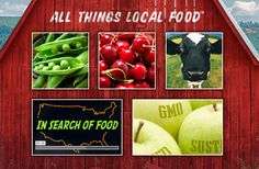 Berg's Berries & Organic Produce | Agrilicious! Featured Farm. 91076 Starlite Ln, Alvadore, OR | Certified Organic