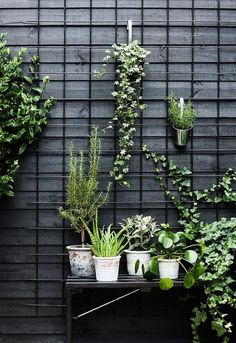 Urban Garden Ideas and Inspiration For City Apartments Idea for front patio space maybe do a similar piece inside for indoor/outdoor plants? The post Urban Garden Ideas and Inspiration For City Apartments appeared first on Outdoor Ideas. Vertical Garden Diy, Vertical Gardens, Small Gardens, Modern Gardens, Water Gardens, Outdoor Plants, Outdoor Gardens, Indoor Outdoor, Hanging Gardens