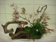 Landscaping / Ohara school flower show