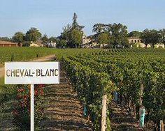 http://interfrance.net/fr/vin/bd1_wine-tips.html@ Tasmanie Jardin  # Faboulous #Bordeaux