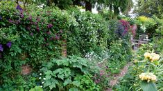 How to create a living wall: ideas and advice for your vertical garden Small Space Gardening, Garden Spaces, Garden Plants, Landscaping With Rocks, Backyard Landscaping, Walled Garden, Starting A Garden, Vegetable Garden Design, Gardening For Beginners