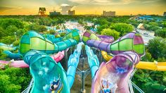 Aquatica Orlando's Cool Summer Party Returns