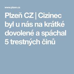 Plzeň CZ | Cizinec byl u nás na krátké dovolené a spáchal 5 trestných činů