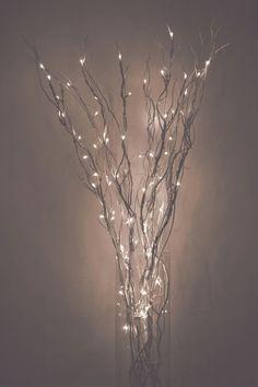 1000+ ideas about Led Fairy Lights on Pinterest | Fairy Lights, Lighting Direct and Led String Lights