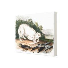 White American Wolf by John James Audubon Canvas Print - custom gift ideas diy