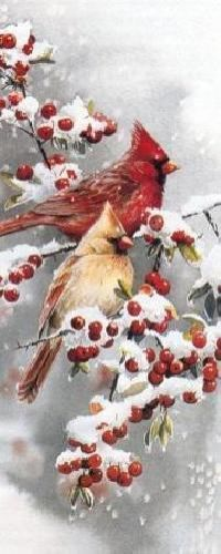 Susan Bourdet Winter Jewels - Cardinals | eBay
