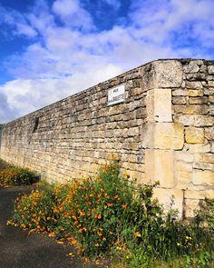 Au coin de la rue.  #igersniort #igersdeuxsevres #igersfrance #flower #fleurs #mur #sky #minimalism #cornerstreet #cettesemainesurinstagram #saintgelais  #etod79_79 #etod79_flower #etod79_sky #etod79_clouds #etod79_stones #etod79_spring Coin, Rue, Sidewalk, Album, Spring, Instagram, Flowers, Side Walkway, Walkway