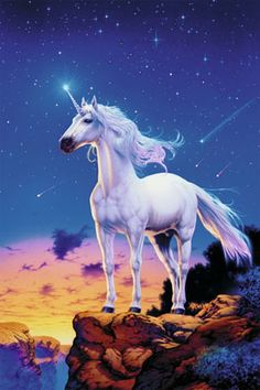 Unicorn against the starry sky.