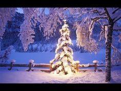 New Post winter christmas tree wallpaper interesting visit xmast. Natural Christmas Tree, Christmas Tree With Snow, Christmas Wall Art, Noel Christmas, Christmas Music, Christmas And New Year, Winter Christmas, All Things Christmas, Christmas Lights