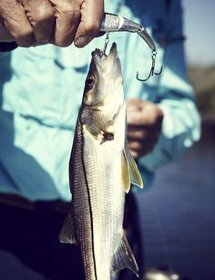 fishin' at the lake til the sun goes down