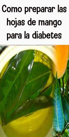 diabetes Cure Diabetes Naturally, Growth Factor, Diabetic Desserts, Diabetes Treatment, Going Natural, Manga, Health Remedies, Vestidos, Recipes