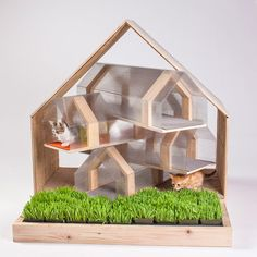 14 Inspiring Custom-Built Modern Cat Houses Revealed at LA Fundraising Event