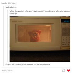 I don't understand why this is so funny.