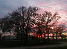The Oaks RV Park | Cedar Creek, Texas Camping 101, Cedar Creek, Central Texas, Rv Parks, Celestial, Spaces, Sunset, World, Outdoor