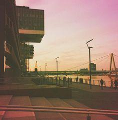 "Cologne   ""Cranes"" #germany #thisiscologne #rheinauhafen #cranehouses #kranhäuser #architecture #rhine #meeting #coolworkingspace #artoffice #magenta #view #cranes #monkeysafari (by lifemeetsmusic)"